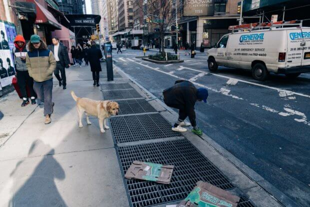 men_picking_dog_poop_on_street.jpeg